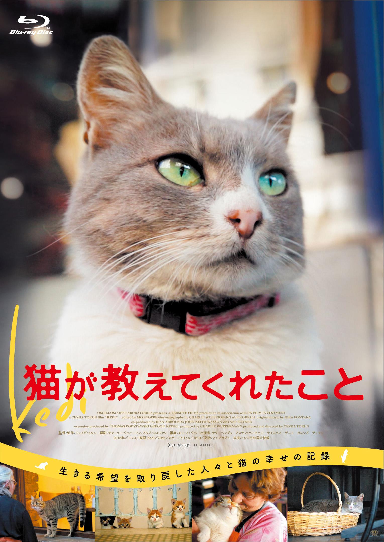 『猫が教えてくれたこと』